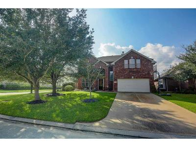 Tomball Single Family Home For Sale: 17703 Towne Bridge Drive