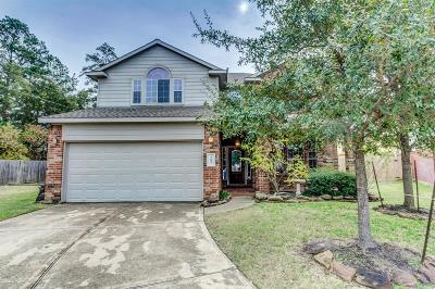 Tomball Single Family Home For Sale: 9603 Elizabeths Glen Lane