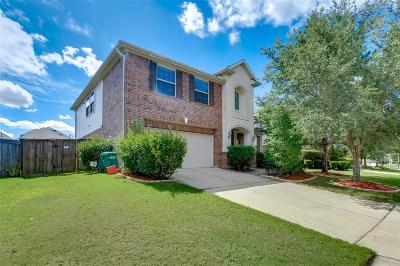 Katy Single Family Home For Sale: 10010 White Pines Drive