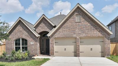 League City Single Family Home For Sale: 2626 Bethel Springs Lane