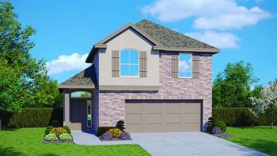 Houston Single Family Home For Sale: 1409 Lake City Lane