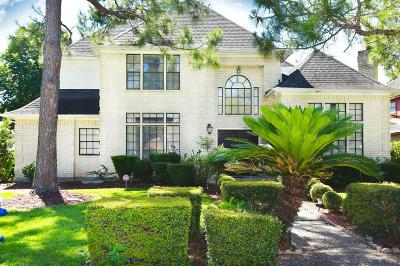 Sugar Land Single Family Home For Sale: 9803 Charlbrook Drive