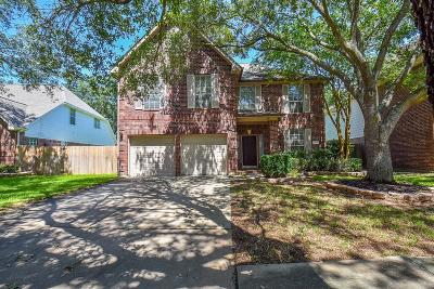 Sugar Land Single Family Home For Sale: 3131 Waters View Drive