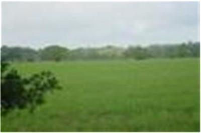 Cat Spring Farm & Ranch For Sale: Fm 949-Tract 2