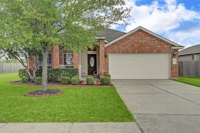 Pearland Single Family Home For Sale: 6023 Vineyard Bend Drive