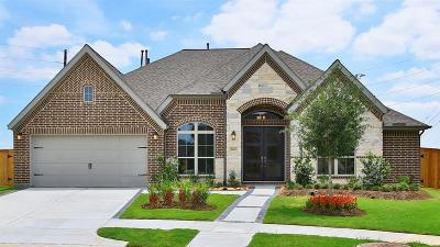 Katy Single Family Home For Sale: 6403 Hedge Sparrow Lane