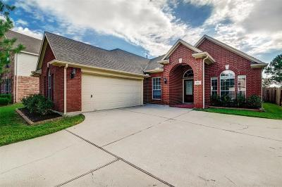 Shadow Creek Ranch Single Family Home For Sale: 2803 Marble Brook Lane