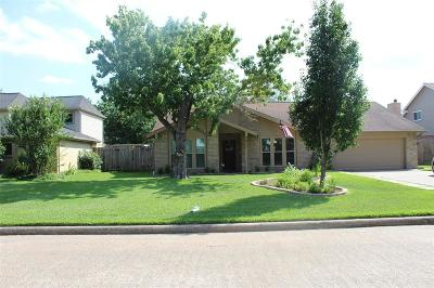 Galveston County Rental For Rent: 411 Westwood Drive