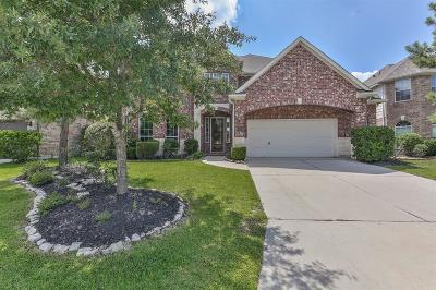 Spring Single Family Home For Sale: 29027 Comal Karst Drive