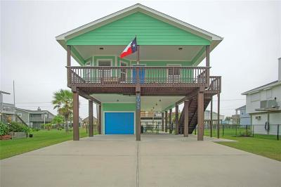 Galveston Single Family Home For Sale: 4033 Hardin Drive