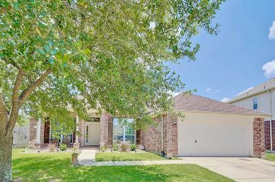 Houston Single Family Home For Sale: 3035 Providence Oak Street