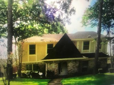 Katy Single Family Home For Sale: 22007 Bucktrout Lane