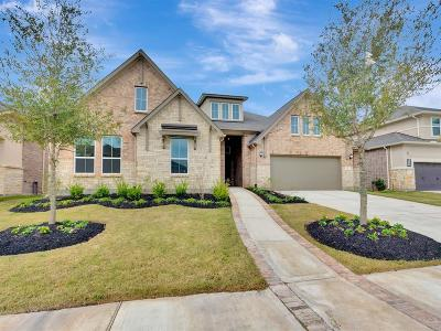 Sugar Land Single Family Home For Sale: 10 Coronal Way