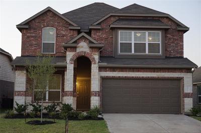 Katy Single Family Home For Sale: 24710 Alberti Sonata Drive