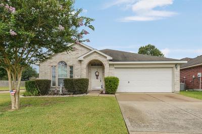 Houston Single Family Home For Sale: 3818 Wingate Park Drive