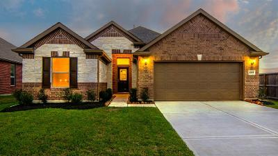 Pearland Single Family Home For Sale: 3302 Regal Park Lane