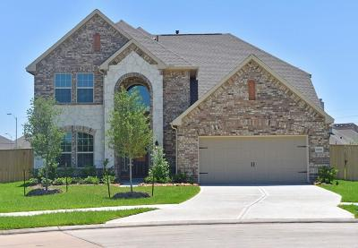 Sugar Land Single Family Home For Sale: 6106 Cottage Grove