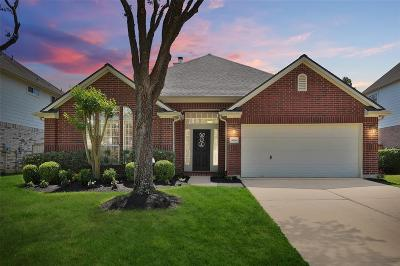 Sugar Land Single Family Home For Sale: 9114 Carriage Point Drive