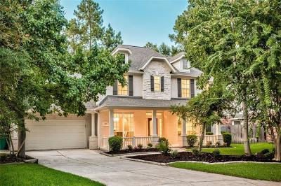 Single Family Home For Sale: 22 Picasso Path Place