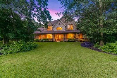 Conroe Single Family Home For Sale: 13253 Chappel Wood Lane