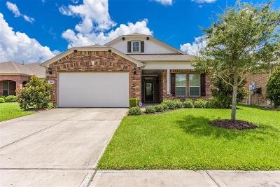 League City Single Family Home For Sale: 1620 Pelago Street