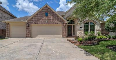 League City Single Family Home For Sale: 527 Cascade View Court