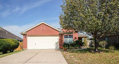 Porter Single Family Home For Sale: 22911 Sebastian Drive