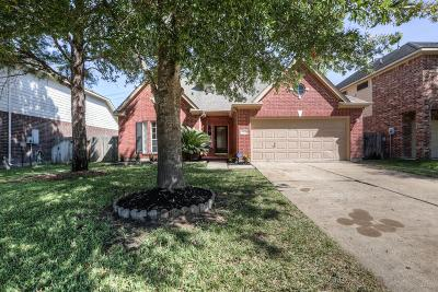 Houston Single Family Home For Sale: 9226 Angelas Meadow Lane