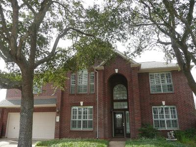 Fort Bend County Single Family Home For Sale: 1939 Misty Falls Ln