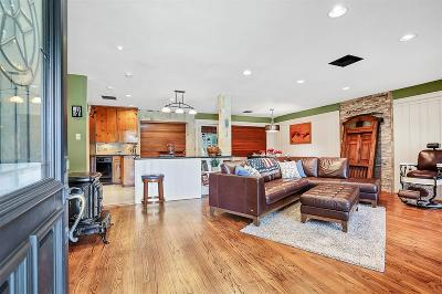 Houston Single Family Home For Sale: 1709 Spur Lane
