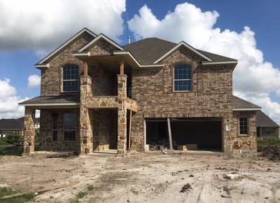 Missouri City Single Family Home For Sale: 3826 Altino Court