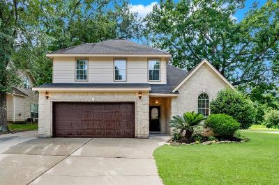 Willis Single Family Home For Sale: 13107 Hydra Court Court