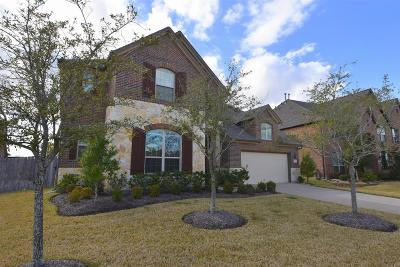 Southern Trails Single Family Home For Sale: 3410 Dove Shores Lane
