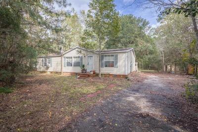 Magnolia Single Family Home For Sale: 31402 Merry Merchant Street