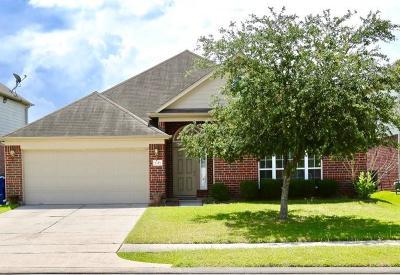 Houston Single Family Home For Sale: 1315 York Creek Drive