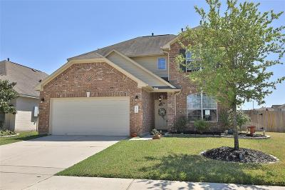 Tomball Single Family Home For Sale: 10059 Arcadian Springs Lane