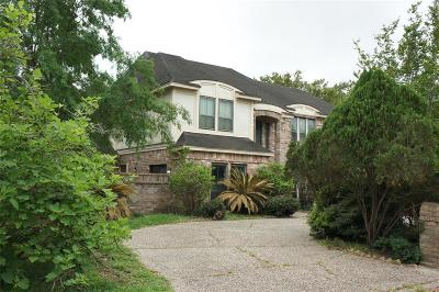 Houston Single Family Home For Sale: 1003 Crossroads Drive