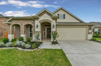 Dickinson Single Family Home For Sale: 3049 Coreopsis Court