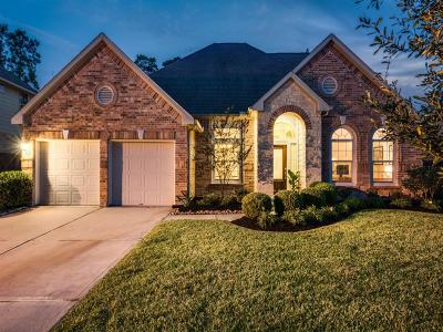 Conroe Single Family Home For Sale: 31911 Burnt Wood