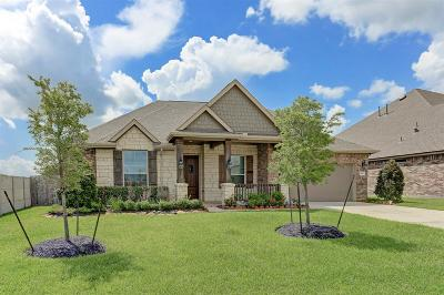 Lakes Of Savannah Single Family Home For Sale: 4903 Enchanted Springs Drive
