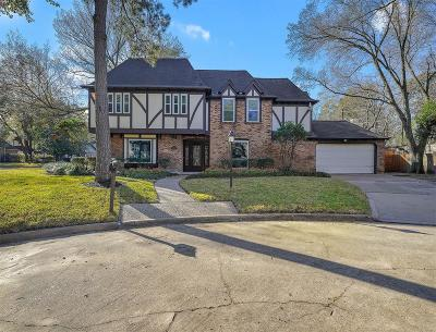 Houston Single Family Home For Sale: 839 Thornvine Lane