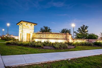 League City, League Single Family Home For Sale: 1536 Palo Duro Canyon Lane