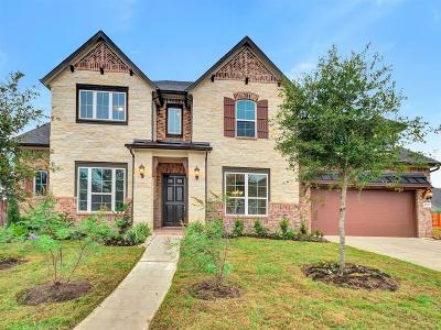 Sugar Land Single Family Home For Sale: 4630 Feather Cove Court
