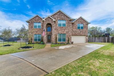 Pearland Single Family Home For Sale: 1601 Scenic Meadow Court