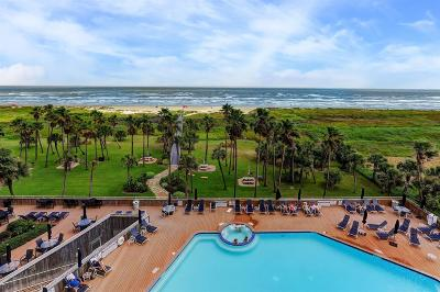 Galveston Mid/High-Rise For Sale: 1401 E Beach Drive #411