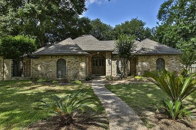 Houston Single Family Home For Sale: 13915 Calmont Drive