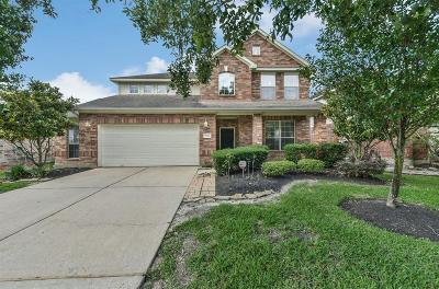 Houston Single Family Home For Sale: 17226 Double Lilly Drive