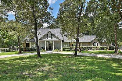 Montgomery County Single Family Home For Sale: 38111 Wildwood Point