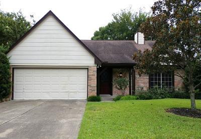 Houston Single Family Home For Sale: 10415 Wayward Wind Lane