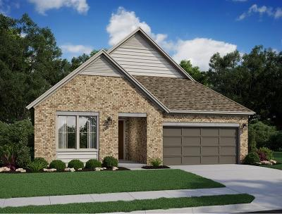 Katy Single Family Home For Sale: 816 Stella Vista Court